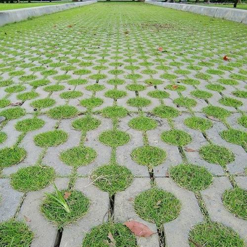 生态植草砖